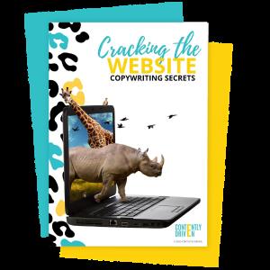 Cracking The Website Copywriting Secrets